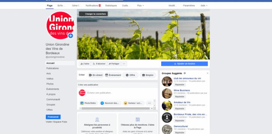 Gironde : La vigne au temps du Covid 19