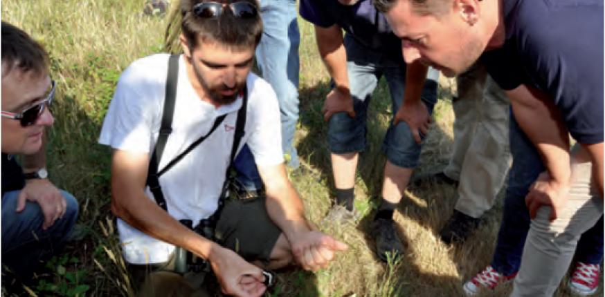Margaux s'engage pour la biodiversité ! Les engagements des propriétés de l'appellation, les actions réalisées et à venir…