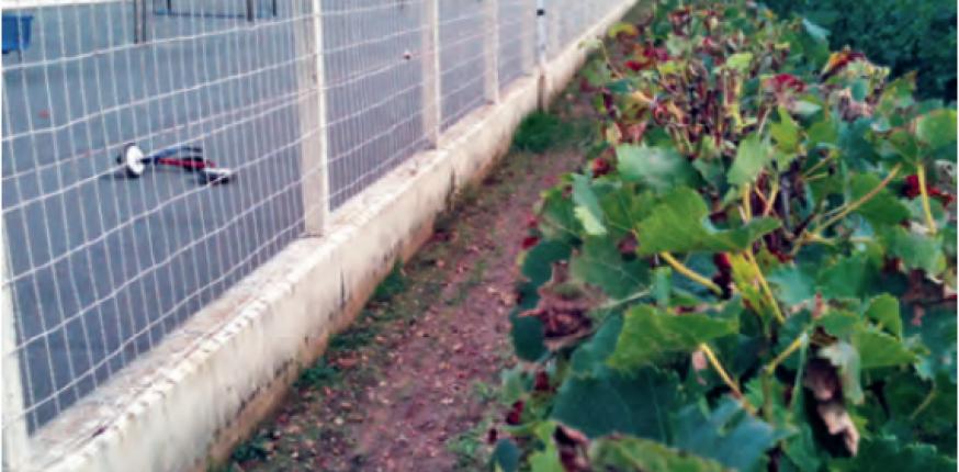 La mise en oeuvre des traitements phytosanitaires : Un contexte en pleine évolution…