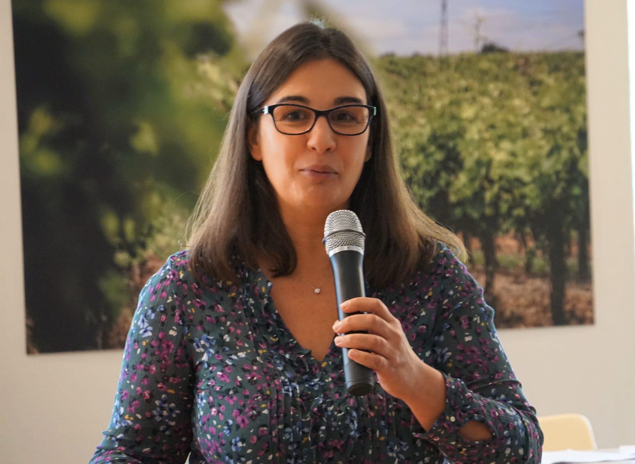 Pépiniéristes viticoles, la réglementation sur la santé du végétal crée le trouble