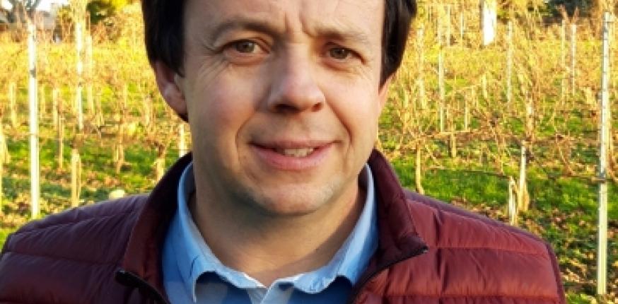 Pépinière viticole : « Le plan de relance répond à nos principaux objectifs »